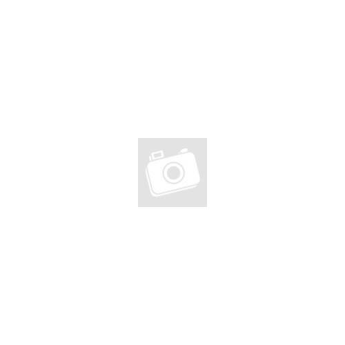 BELL MOTO-9 MIPS® Tomac Monster Replica Cross sisak 2019